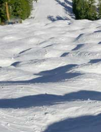 Skiing Moguls Bumps Mine Field Groomers