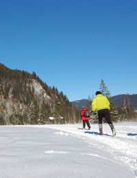 Endurance Cross-country Skiing Marathon